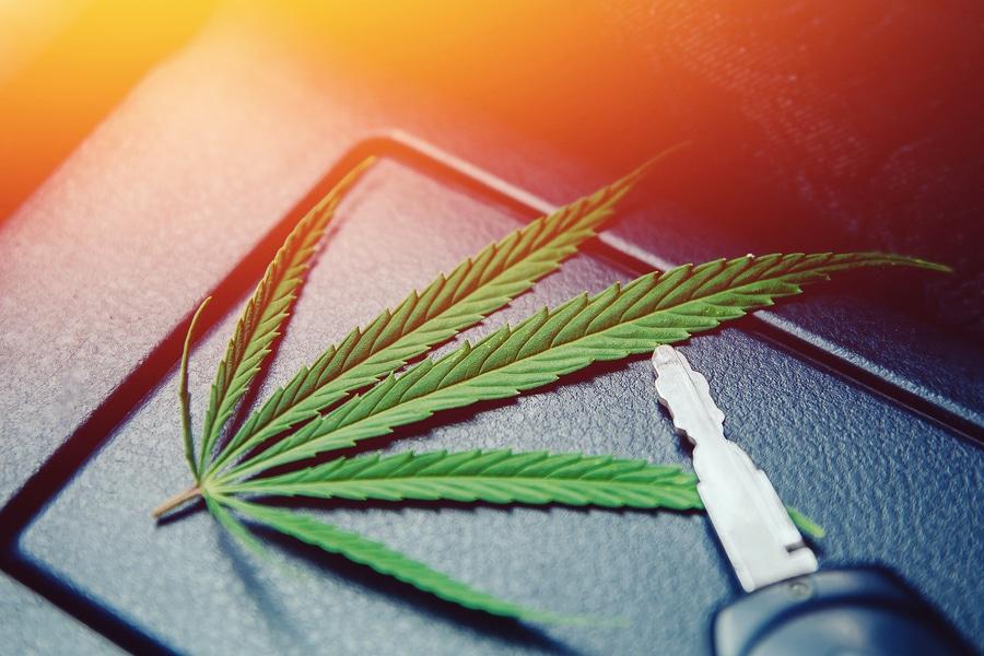 Drogenfahrt: Absehen von Fahrverbot bei freiwilligem Verzicht auf Fahrerlaubnis