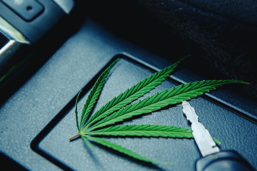Fahrerlaubnisentziehung bei gelegentlichem Cannabiskonsum nach erstmalig geahndeter Fahrt