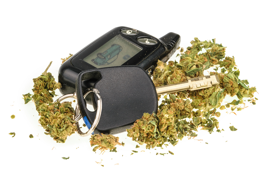 Fahrerlaubnisentziehung - gelegentlicher Cannabiskonsum ab 100 ng/ml THC-COOH