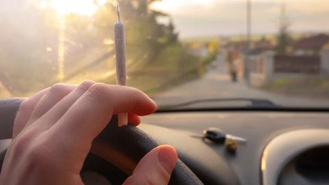 Cannabisfahrt - ärztlich verordnetes Cannabis