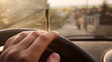Fahrerlaubnisentziehung - gelegentlicher Konsum von Cannabisprodukten