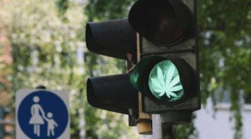 Wirkungsdauer von THC – Fahrt unter Cannabiseinfluss