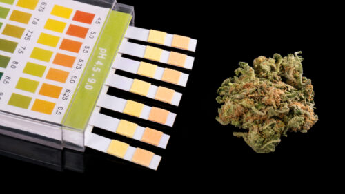 Ahndung einer Drogenfahrt bei Nichterreichen des Nachweisgrenzwertes